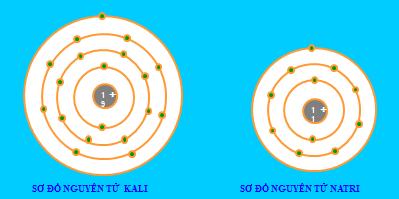 Sơ đồ nguyên tử Kali và Natri