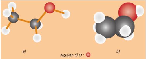 mô hình phân tử rượu etylic