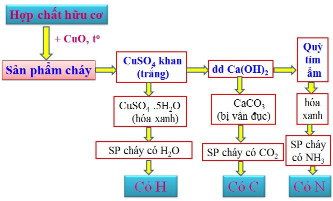 Phương pháp tiến hành phân tích định tính hợp chất hữu cơ