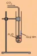 Khí CO2 phản ứng với nước