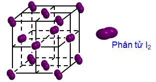 Cấu trúc phân tử Iod