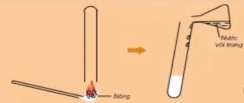 Thí nghiệm chứng tỏ bông có chứa Cacbon