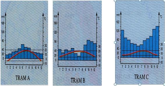 biểu đồ hình 53.1