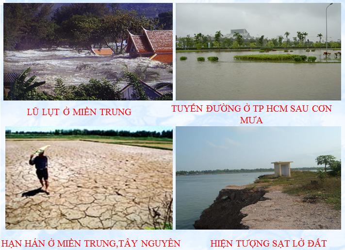 Cây xanh hạn chế ngập lụt, hạn hán