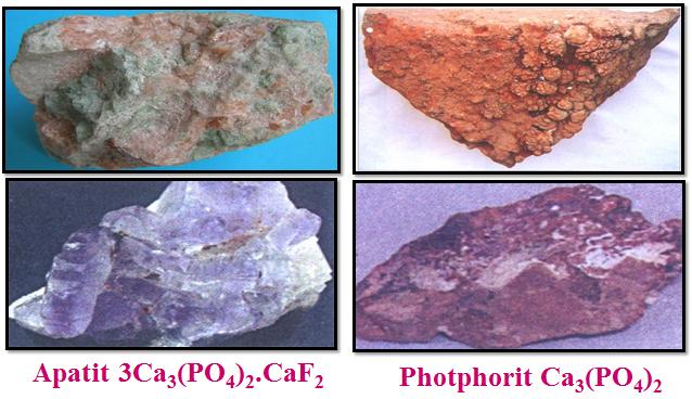 Hai khoáng vật chính của photpho