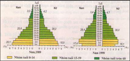 Hình 5.1.Tháp dân số Việt Nam năm 1989 và năm 1999