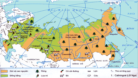 Sự phân bố nông nghiệp của Liên bang Nga