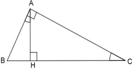Trắc nghiệm Các trường hợp đồng dạng của tam giác vuông có đáp án