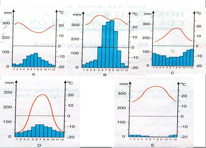 Các biểu đồ nhiệt độ và lượng mưa trang 41 SGK Địa lý 7