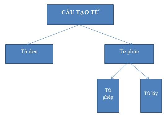 Cấu tạo từ tiếng Việt
