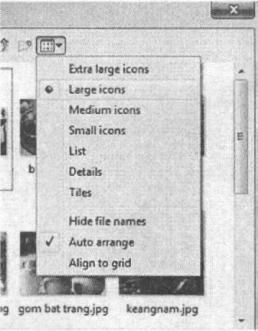 Hình 5.12. Bảng chọn cách hiển thị ảnh khi nháy chuột vào nút View