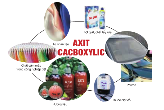 ứng dụng cacboxylic