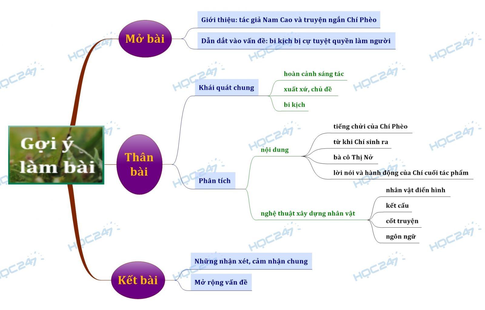 sơ đồ tư duy phân tích bi kịch bị cự tuyệt quyền làm người trong truyện ngắn Chí Phèo của Nam Cao