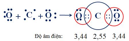 Sự hình thành phân tử CO2