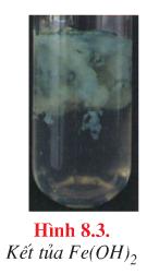 Kết tủa sắt (II) hidroxit
