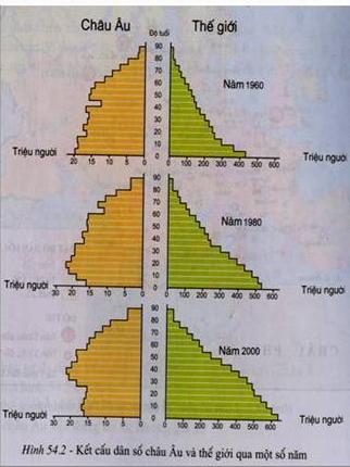 Kết cấu dân số châu Âu và thế giới qua 1 số năm