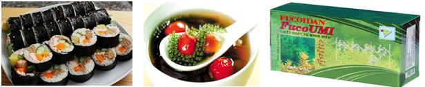 Lợi ích của tảo