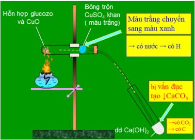 Xác định định tính cacbon và hiđro