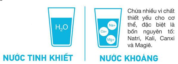 Sự khác nhau giữa nước tinh khiết và nước khoáng