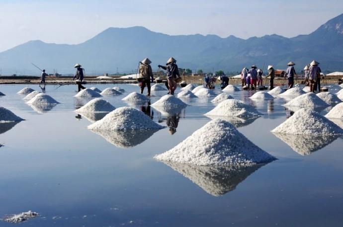 Ruộng muối