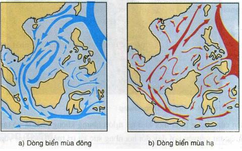 Hình 24.3. Lược đồ dòng biển theo mùa trên Biển Đông