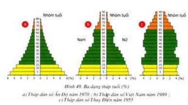 Ba dạng tháp tuổi