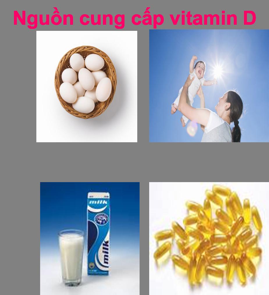 Nguồn cung cấp vitamin D