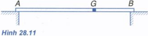 Giải bài tập trang 131 bài 28 Quy tắc hợp lực song song SGK Vật Lý 10 Nâng cao