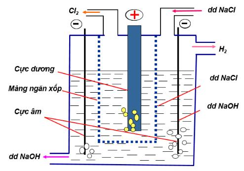 Sơ đồ điện phân NaCl để thu khí Clo