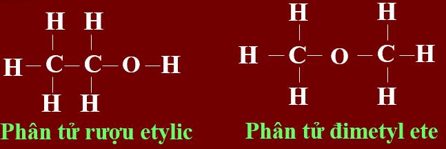 Trật tự liên kết giữa các nguyên tử trong phân tử