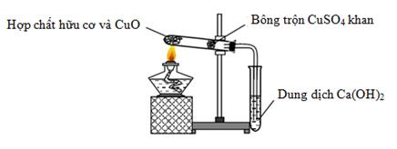 xác định nitơ có trong hợp chất hữu cơ