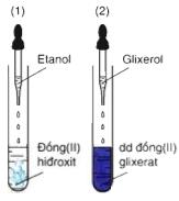 thí nghiệm Cu(OH)2 với glixerol
