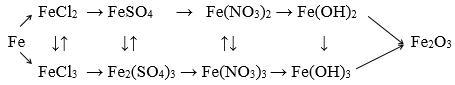 chuỗi phản ứng của sắt