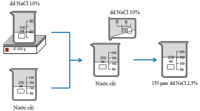 Quá trình pha chế dung dịch NaCl 2,5%
