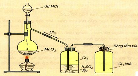 Điều chế và thu khí clo trong phòng thí nghiệm
