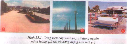 Hạn chế ô nhiễm không khí Hình 1