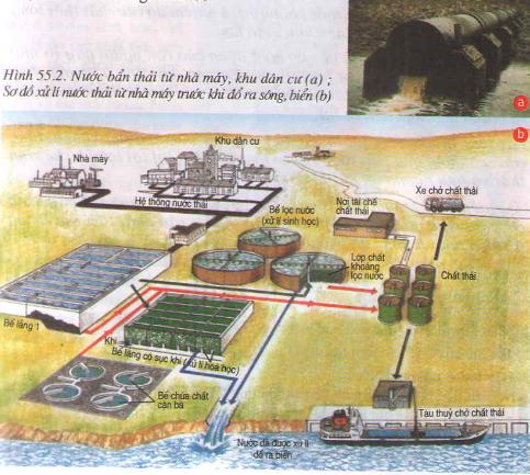 Hạn chế ô nhiễm nguồn nước