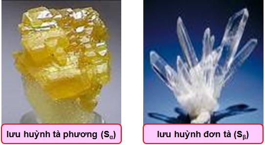 2 dạng thù hình của lưu huỳnh