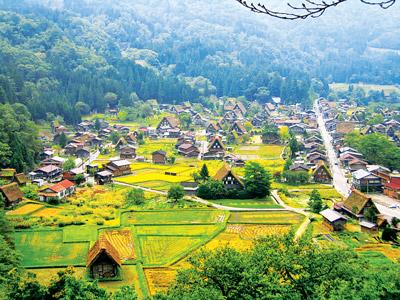 Quang cảnh nông thôn