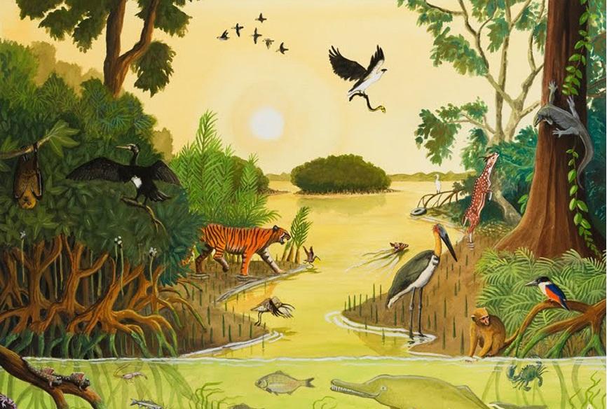 Quần xã sinh vật đầm lầy Mangrove Ấn Độ