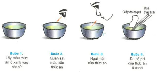 Quy trình đánh giá chất lượng thức ăn ủ xanh