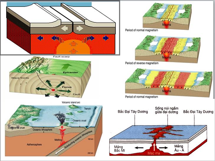 Các địa mảng của lớp vỏ Trái Đất