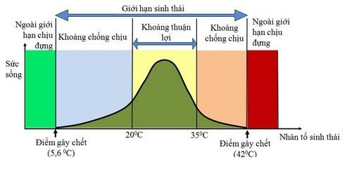 Sơ đồ tổng quát mô tả giới hạn sinh thái của sinh vật