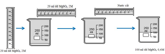 Quá trình pha loãng dung dịch MgSO4 2M