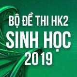 Bộ đề thi HK2 môn Sinh lớp 12 năm 2019
