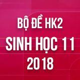 Bộ đề thi HK2 môn Sinh học lớp 11 năm 2018