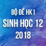 Bộ đề thi HK1 môn Sinh học lớp 12 năm 2018
