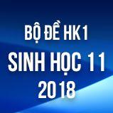 Bộ đề thi HK1 môn Sinh học lớp 11 năm 2018