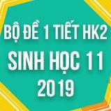 Bộ đề thi 1 tiết HK2 môn Sinh học lớp 11 năm 2019