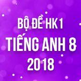Bộ đề thi HK1 môn Tiếng Anh lớp 8 năm 2018